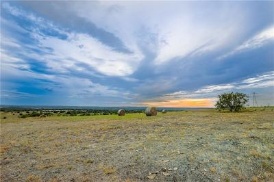 Weatherford Farm & Ranch For Sale: Tbd-9 Pearson Ranch Road
