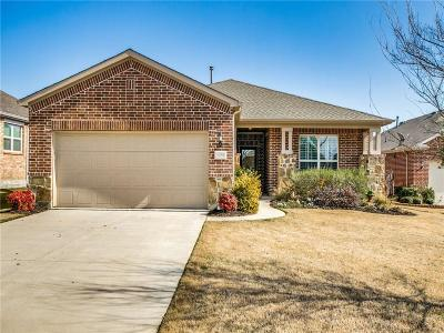Frisco Single Family Home For Sale: 6258 Paragon Drive