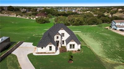 Granbury Single Family Home For Sale: 1102 Bentwater Parkway