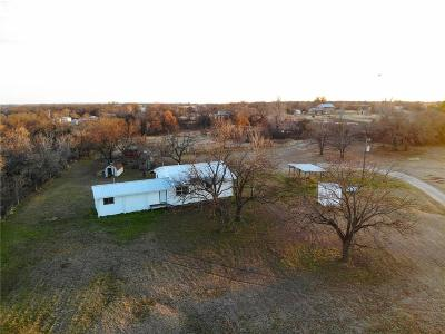 Parker County Single Family Home For Sale: 810 E Poe Prairie Road
