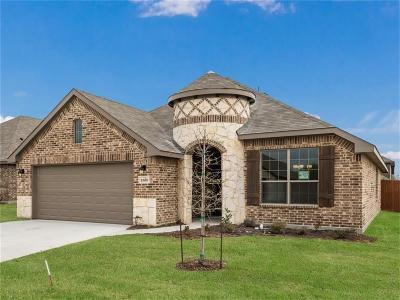 Weatherford Single Family Home For Sale: 2509 Silver Fox Trail