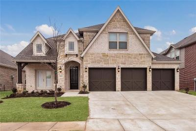 McKinney Single Family Home For Sale: 1313 Hodge Street