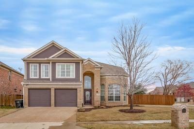 Frisco Single Family Home For Sale: 15292 Palo Pinto Drive