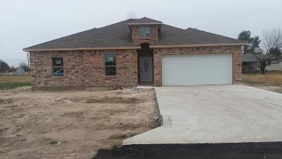 Gun Barrel City Single Family Home For Sale: 318 Port