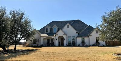 Aledo Single Family Home For Sale: 140 Turkey Creek Drive