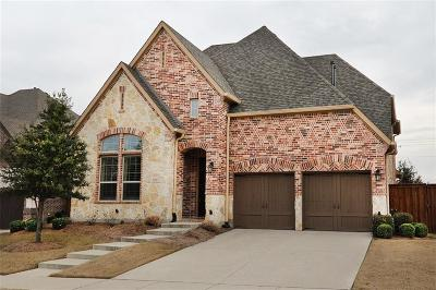 Denton County Single Family Home For Sale: 1333 Horse Creek Drive