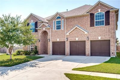 McKinney Single Family Home Active Option Contract: 12201 Natalie Drive