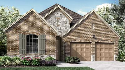McKinney Single Family Home For Sale: 5504 Kildare Court