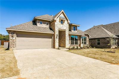 Arlington Single Family Home For Sale: 3817 Pine Valley Lane