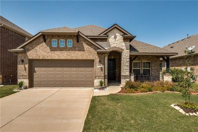 Little Elm Single Family Home For Sale: 1824 Abby Creek Drive