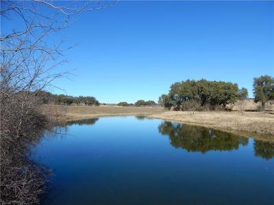 Comanche Farm & Ranch For Sale: 758 County Road 238