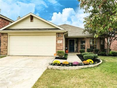 Little Elm Single Family Home For Sale: 1617 Kittyhawk Drive