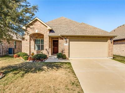 Little Elm Single Family Home For Sale: 2778 Waterfall Lane