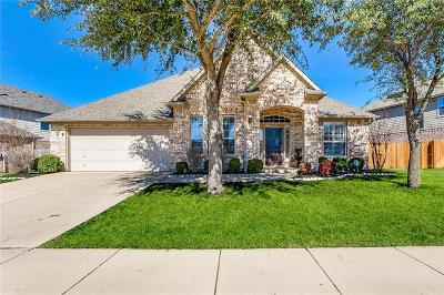Fort Worth Single Family Home For Sale: 10317 Vintage Drive