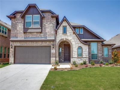 Fort Worth Single Family Home For Sale: 10325 Wild Goose Drive
