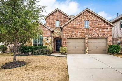 Little Elm Single Family Home For Sale: 2587 Mirage Drive