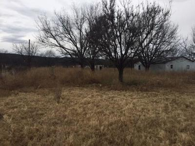 Palo Pinto County Farm & Ranch For Sale: 156 Bonnie Lane