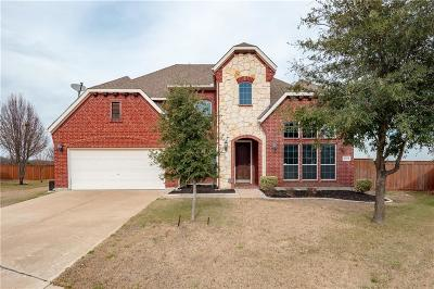 Grand Prairie Single Family Home For Sale: 2703 Explorador