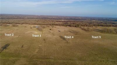 Wise County Farm & Ranch For Sale: Tr. 3 Echo Road