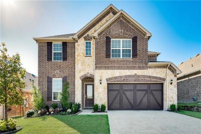 Lewisville Single Family Home For Sale: 213 Cielo Azure Lane