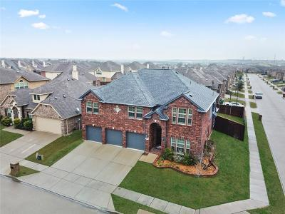 Little Elm Single Family Home For Sale: 13900 Sparrow Hill Drive
