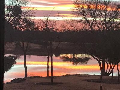 Parker County Single Family Home For Sale: 201 Wood Lake Road