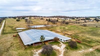 Weatherford Farm & Ranch For Sale: 444a N Lambert Road