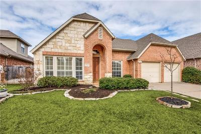 McKinney Single Family Home For Sale: 1602 Sandy Point Road