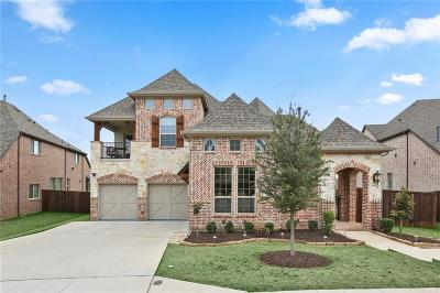 Grapevine Single Family Home For Sale: 1228 Huron Drive