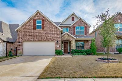 McKinney Single Family Home For Sale: 1025 Spring Falls Drive