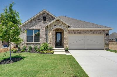 Little Elm Single Family Home For Sale: 9513 Blue Stem Lane