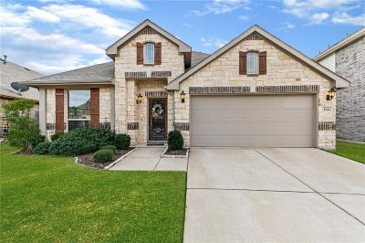 Little Elm Single Family Home For Sale: 1524 Whistler Drive