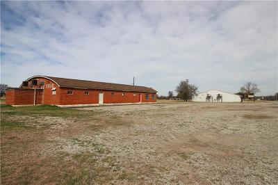 Palo Pinto County Commercial For Sale: 908 S Mingus Boulevard