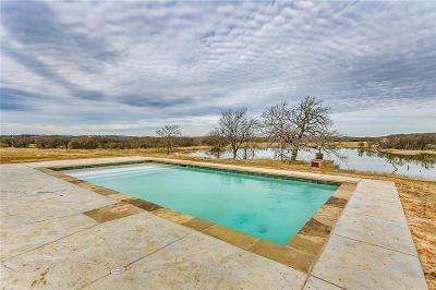 Parker County Single Family Home For Sale: 110 Searchers Court