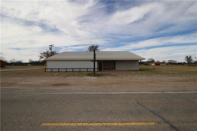 Palo Pinto County Commercial For Sale: 816 S Mingus Boulevard