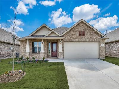 Little Elm Single Family Home For Sale: 1316 Lake Grove Drive