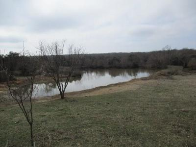 Springtown Farm & Ranch For Sale: 133 Private Road 3814