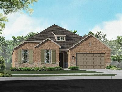 Denton County Single Family Home For Sale: 3813 Redbud Drive