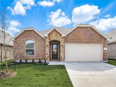 Little Elm Single Family Home For Sale: 1316 Rembrandt Drive
