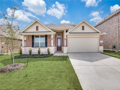 Little Elm Single Family Home For Sale: 1328 Lake Grove Drive