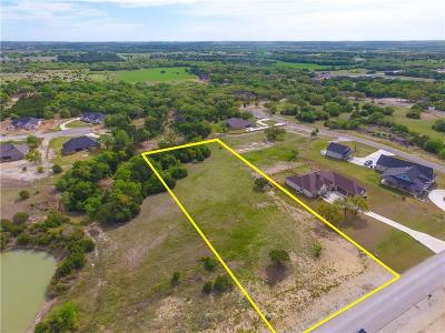 Hood County Residential Lots & Land For Sale: 248 Martin Drive