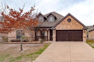 Parker County Single Family Home For Sale: 244 Spyglass Drive
