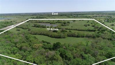 Blue Ridge Farm & Ranch For Sale: 15674 Fm 981 #102 AC