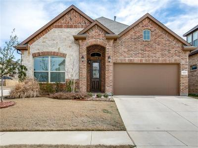 Fort Worth Single Family Home For Sale: 9840 Tule Lake Road