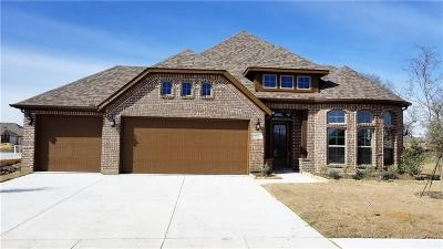 Collin County Single Family Home For Sale: 4303 Pecan Lane