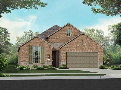 Little Elm Single Family Home For Sale: 1705 Spoonbill Drive