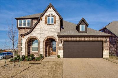 Little Elm Single Family Home For Sale: 1216 Barn Owl Drive