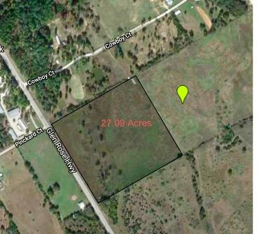 Granbury Farm & Ranch For Sale: 9601 Glen Rose Highway