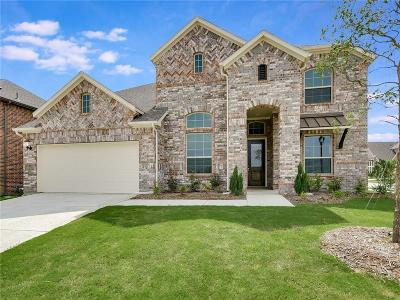 McKinney Single Family Home For Sale: 2121 Dublin Court