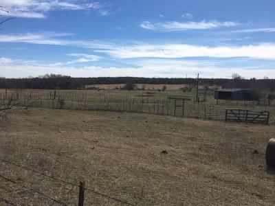 Weatherford Farm & Ranch For Sale: Central Road